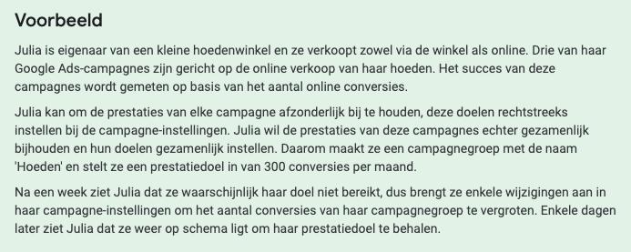 voorbeeld campagnegroep